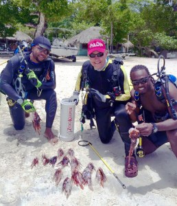 Cleaning up the lionfish at Couples Resorts in Jamaica