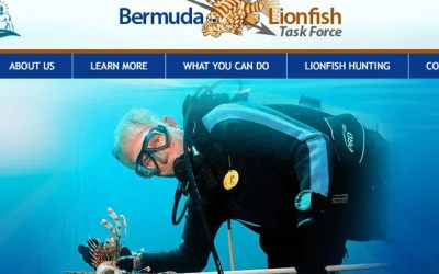 Bermuda Lionfish Task Force