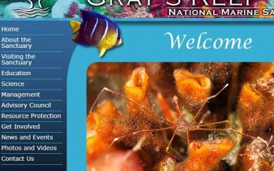 Gray's Reef National Marine Sanctuary Lionfish News