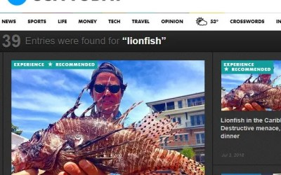 USA TODAY Lionfish News Articles