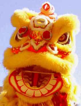 Afbeeldingsresultaat voor leeuwendans china