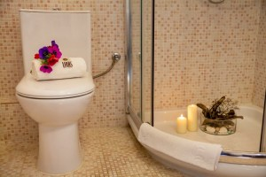 Brandy - Junior Suite 8-bathroom-PELION HOTEL