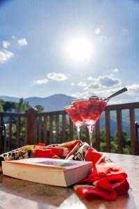 Cranberry-Suite 2- Mountain view-Pelion Hotel