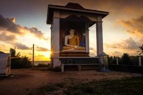 Apus in Sri Lanka in Unawatuna