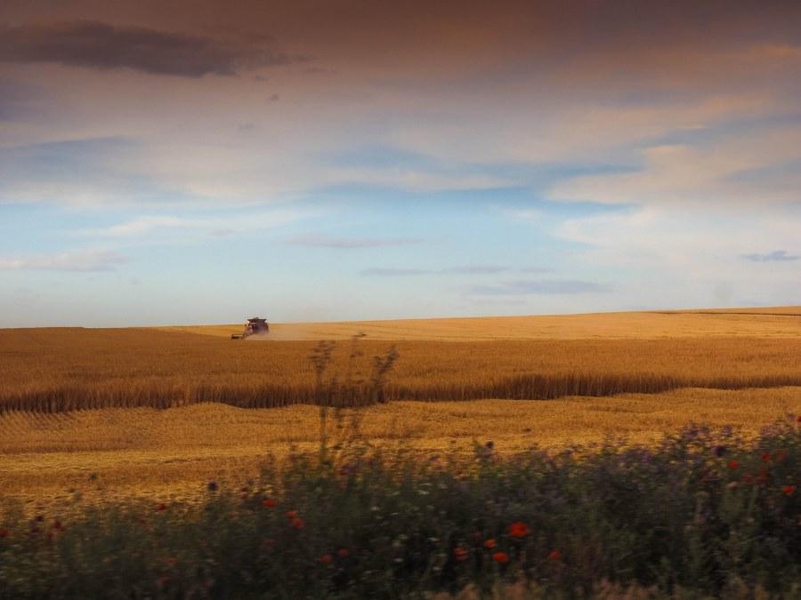 drumul-vechi-spre-mare-51_1600x1200