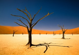 Documentar despre Namibia
