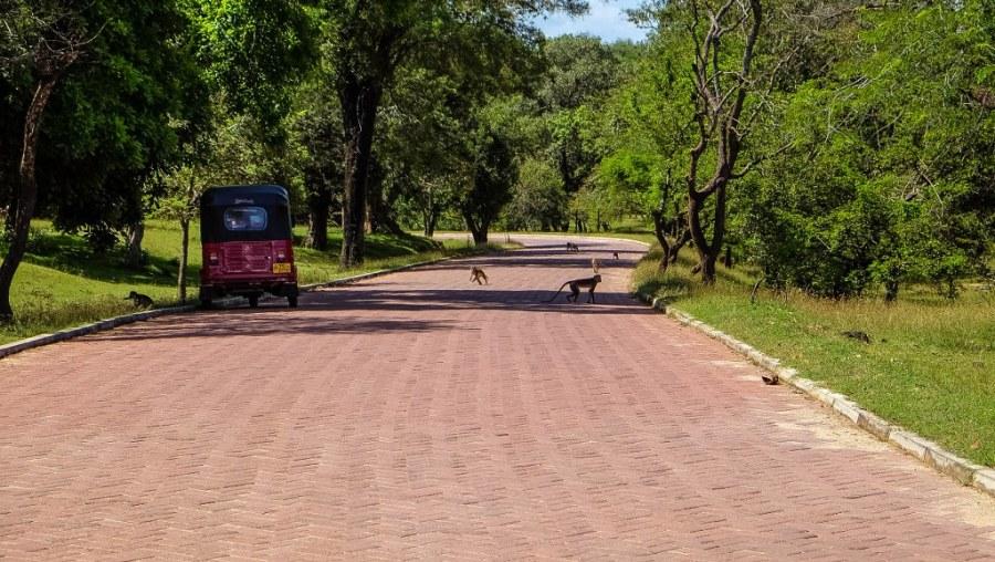Polonnaruwa-Sri-Lanka-127_1024x578