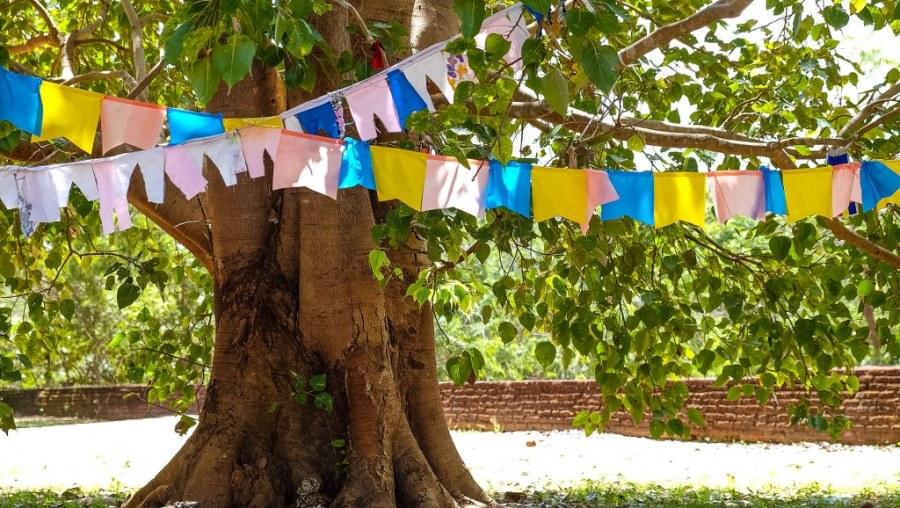 Polonnaruwa-Sri-Lanka-81_1024x578