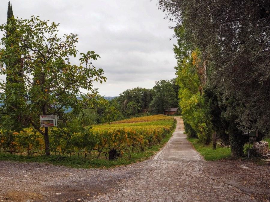 saint-jeannet-village-99_1067x800