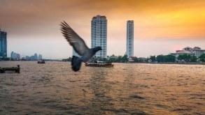 Bangkok – orașul vieții