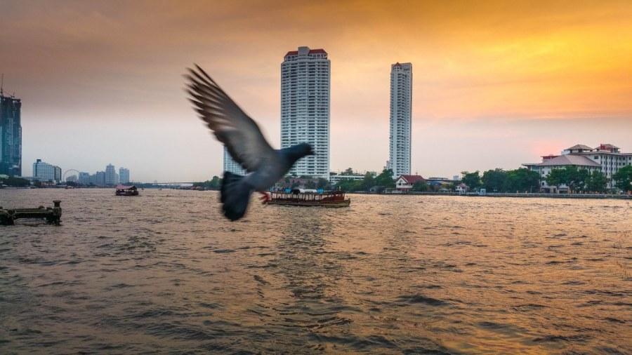 Bangkok-43_1280x720