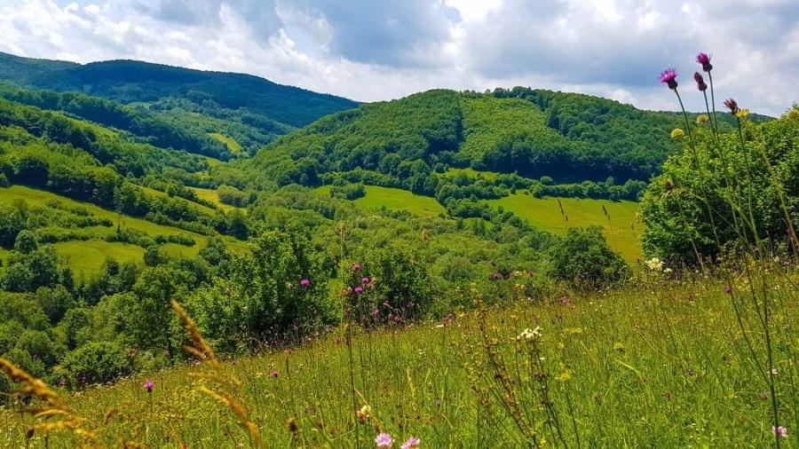 casa-prințului-Charles-Valea-Zălanului-5