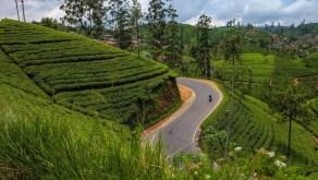 Recomandare de traseu în Sri Lanka, ghid de călătorie