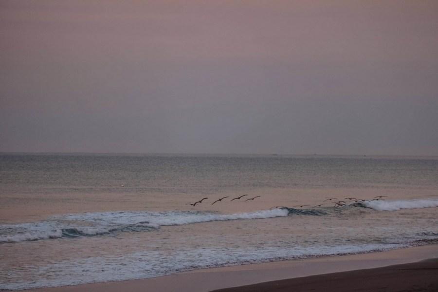 el-salvador-playa-dorada-casa-tortuga-320-of-414_1280x853
