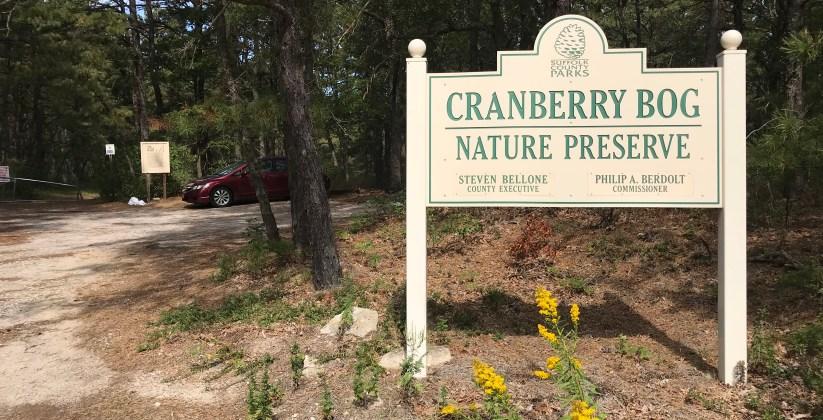 Cranberry Bog Nature Preserve