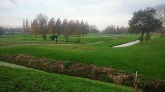 Nem túzok ha azt mondom, itt még a golfpályán is fácánok vannak