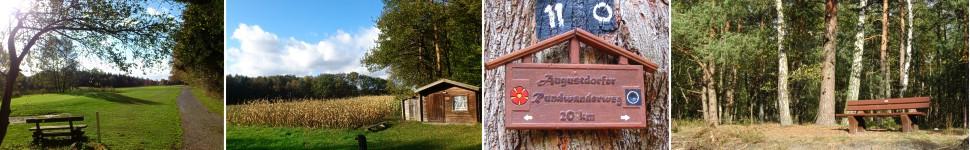 banner-augustdorfer-rundwanderweg