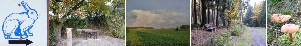 banner-hasenweg-alverdissen