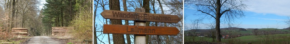 banner-lueerdissen-windelstein-foersterteiche-lemgo