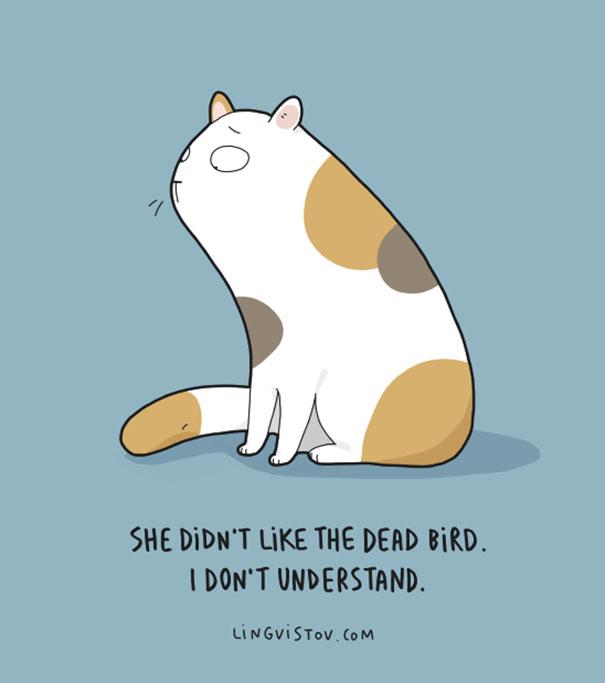 Des bandes dessinees danimaux amusantes page 2 sur 4, funny cartoons pun cat