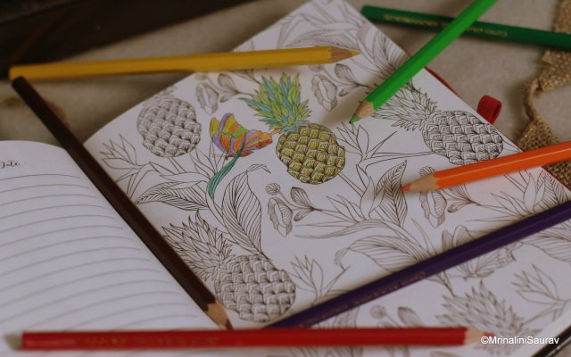 MatrikaS The Creative Woman's Journal Adult Colouring Pages