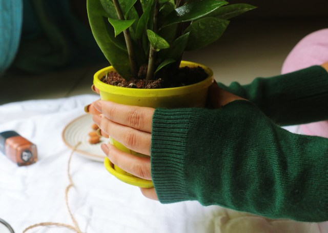 Literary Book Gifts Writing Gloves | Review