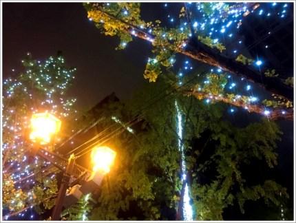 イルミネーション、冬、関西
