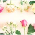 母の日にお花を渡したい!カーネーション以外におすすめの花は?