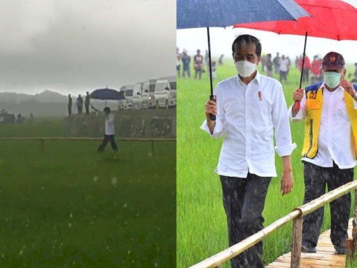 Viral Video Jokowi Blusukan di Tengah Sawah Tembus Hujan Lebat, Enggan Dikawal Paspampres | Indozone.id