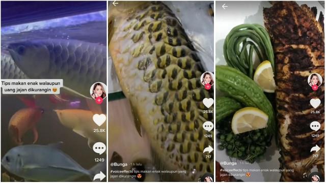 Viral Wanita Ini Masak Arwana Peliharaan Jadi Ikan Bakar