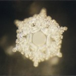 Masaru Emoto Water crystal structured water love and gratitude for water