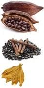 Tabak Zusatzstoffe