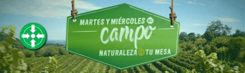 Main Campo Banner