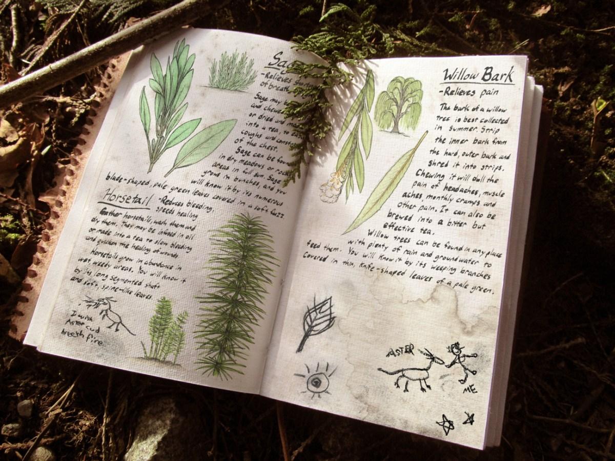 Sable's Book (2015)