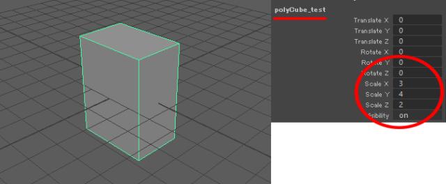 設定ファイルの値に沿ってポリキューブが生成されました