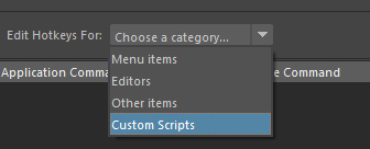 カスタム スクリプト(Custom Scripts)