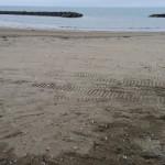 寺泊山田海岸の漂着ゴミ清掃が始まりました。