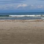 新潟市西蒲区越前浜で塩田からの塩作りしてきました。