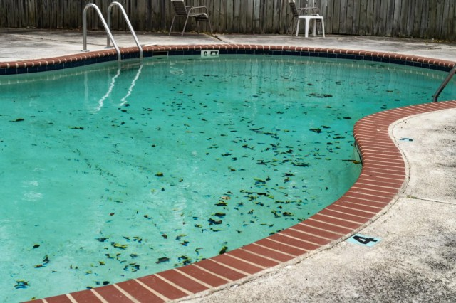 How to Remove Pool Stains: Your Complete Guide