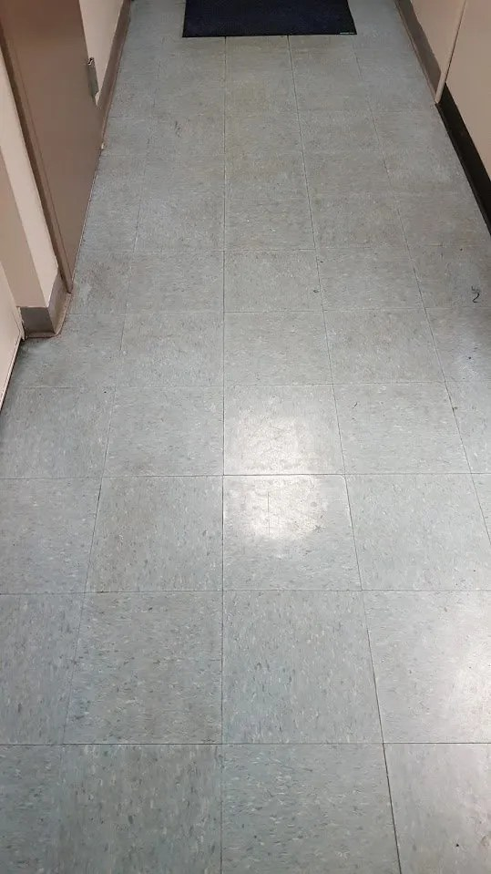floor stripping and waxing springfield mo