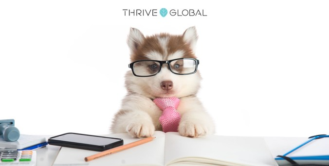10 Reasons to Work Life a Dog Thrive Global Lisa-Michelle Kucharz
