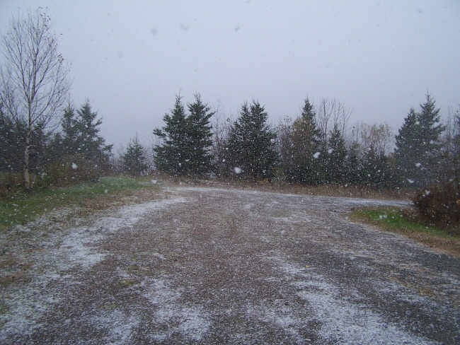 Photo outside during the first snowfall of 2008