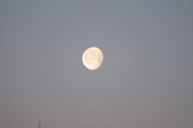 Feb morning full moon