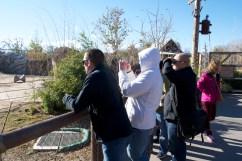 Spotting zoo creatures