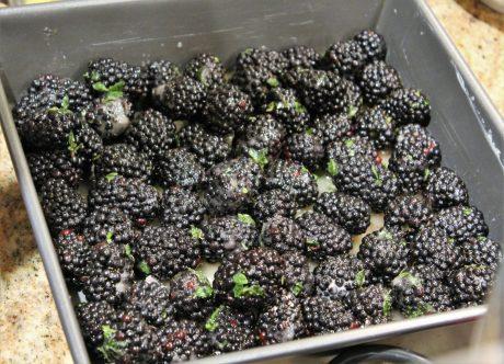 Blackberry Thyme Crisp4