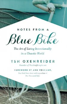 notes blue bike