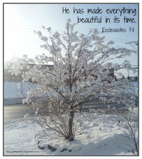 winter beautiful bible