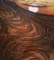 The land through time. #Pyrography #art #walnut #burn #shellac #wood #love #ireland