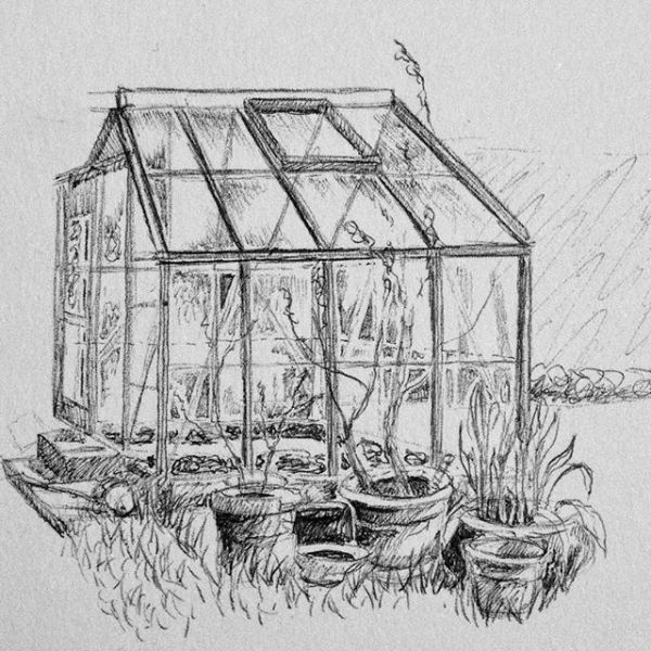 Coffee time in the garden and a quick ballpoint sketch of the greenhouse - it's almost time the tomatoes were going in. Spring sprung