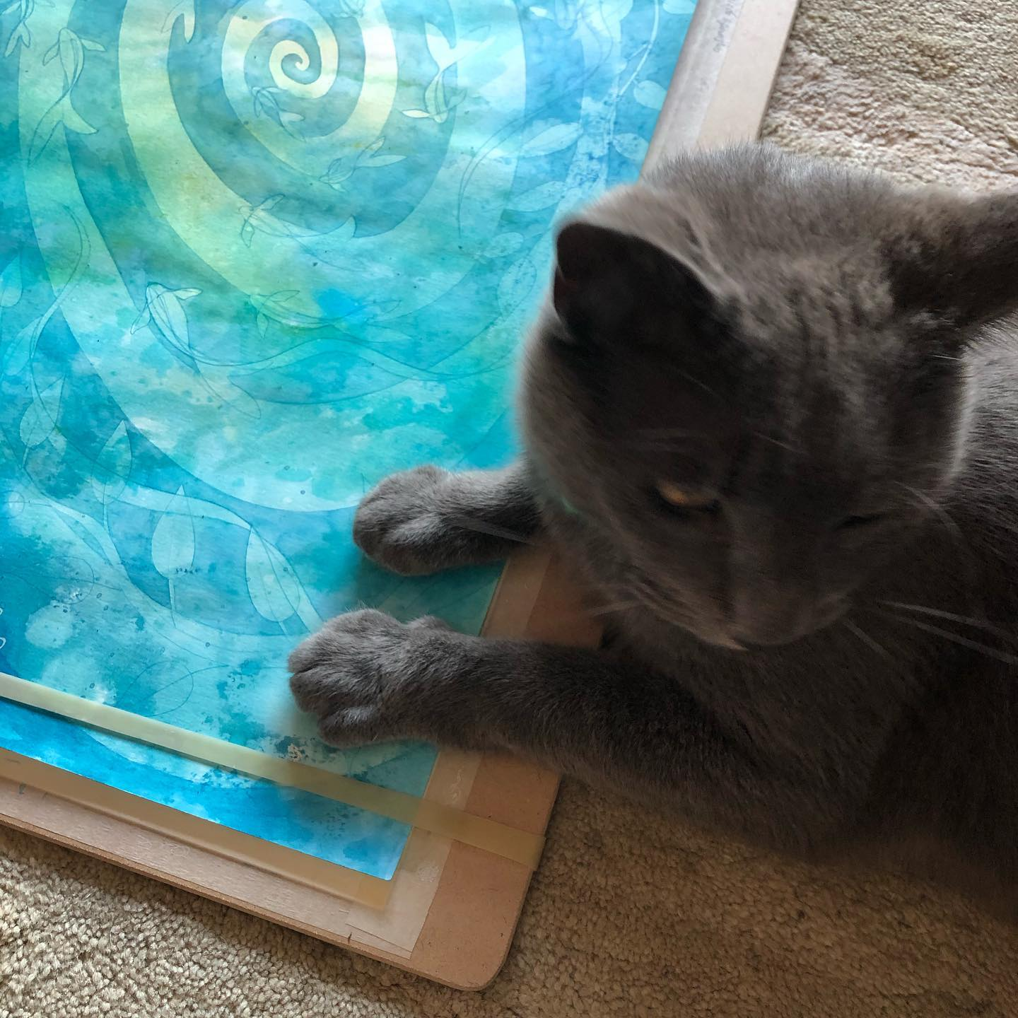 The artists cat seems to have taken a liking to the latest painting.   @lisa_cat